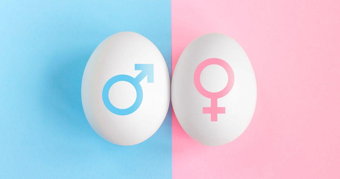 Pregnancy Test. Concept boy or girl. Symbols of man and woman. Gender affiliation concept
